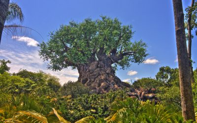 Tree of Life - Disney Series